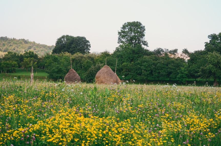 Quiet days in Breb,Maramureș